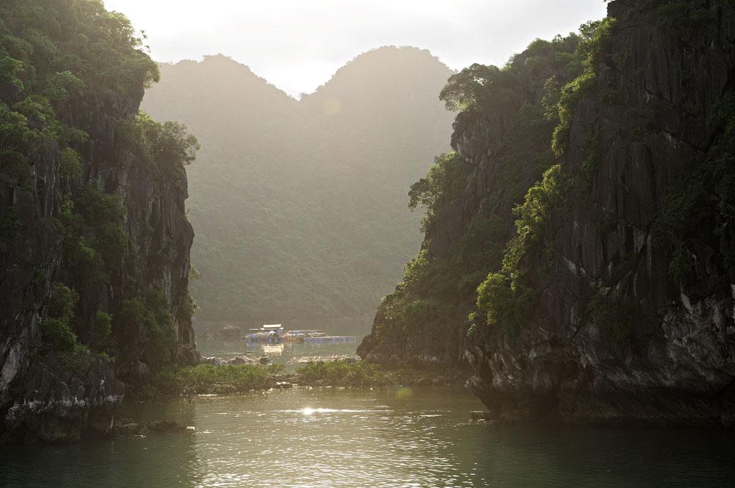 Îles de la baie d'Halong à contre-jour, Vietnam