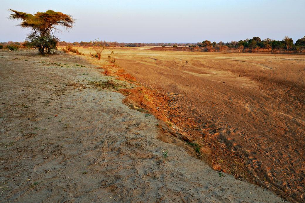 Le soleil se lève sur la vallée de la Luangwa, Zambie