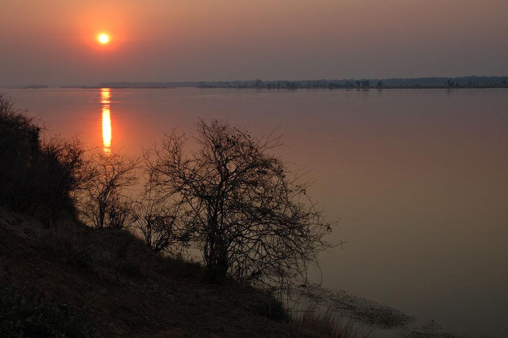 Lever de soleil sur le fleuve Zambèze, Zambie